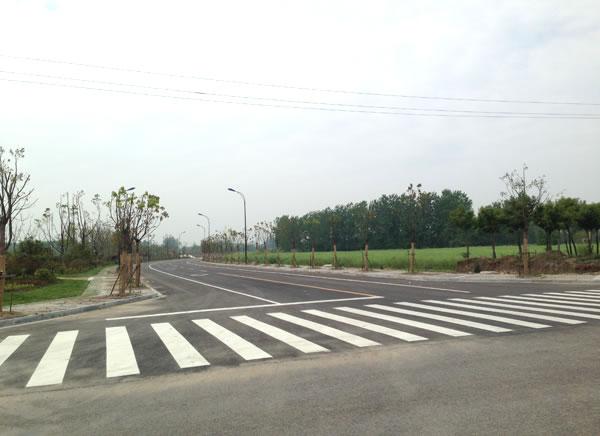 城南新区2.5产业道路工程